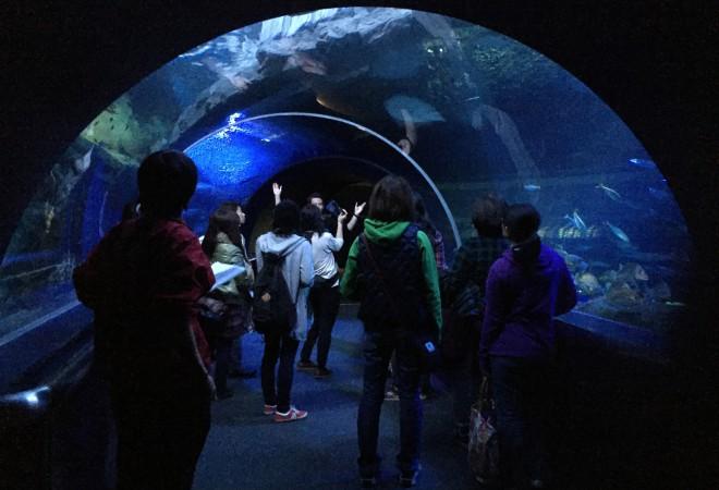 【イベントレポート】マリンピア日本海 お泊まりナイトツアー