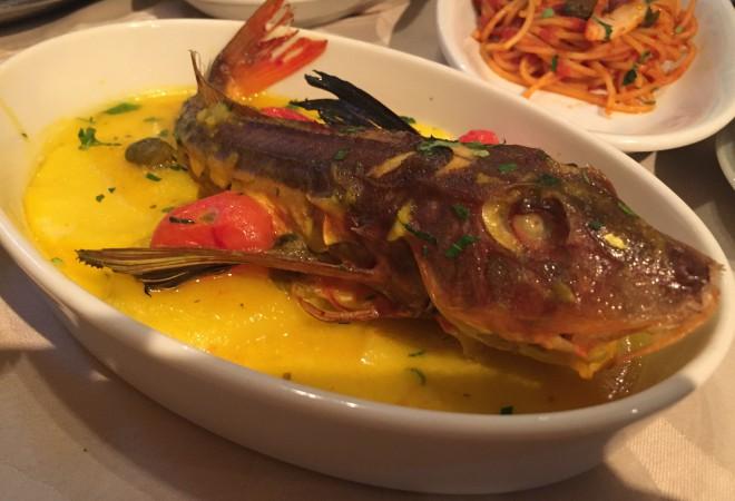 新潟のおいしい魚を食べられるレストラン、知ってる?